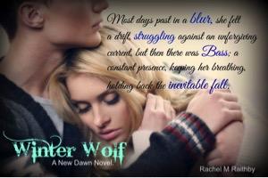 Wolfteaser