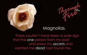 Magnolia Teaser